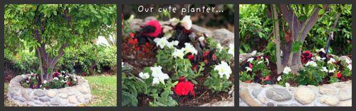 Earth Day Blog 12