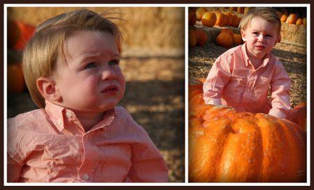 Keirna Pumpkin Patch