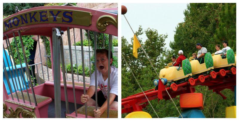 Disney Park Day 3b