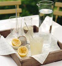 Gt02junmsl_lemonade01_l