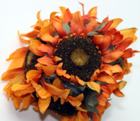 October_2006_071fixed