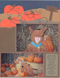 Torn_pumpkin_patch_image